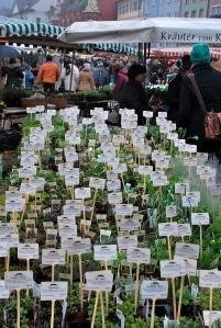 Farmers' market offerings in the Munsterplatz