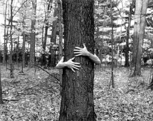 Image: treehuggerfilms.com